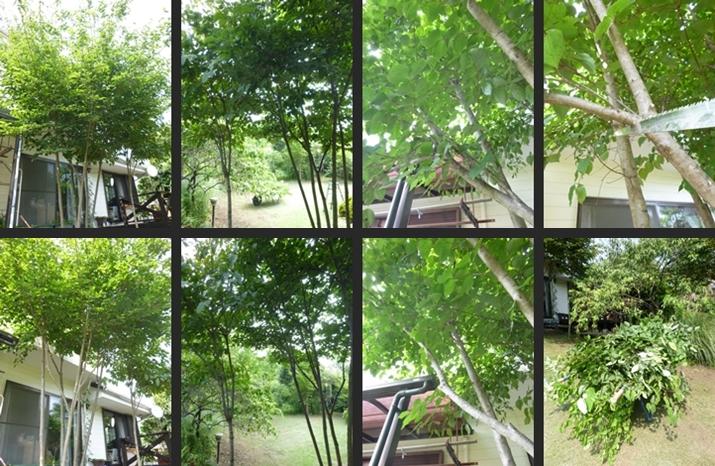 2014-07-16 2014-07-16 001 092-horz-vert