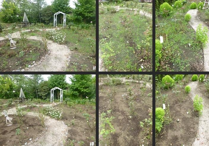 2014-07-17 2014-07-17 001 051-horz-vert