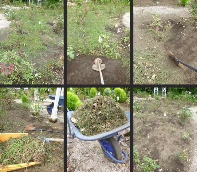 2014-07-17 2014-07-17 001 041-horz-vert