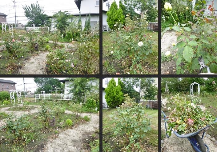 2014-07-17 2014-07-17 001 002-horz-vert
