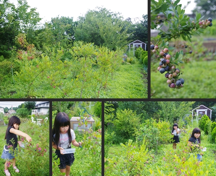 2014-07-22 2014-07-22 001 002-horz-vert