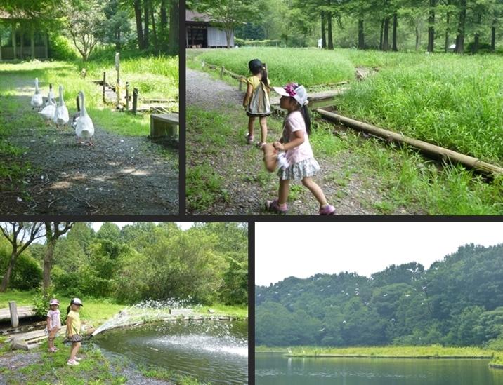 2014-07-25 2014-07-25 001 030-horz-vert