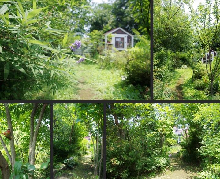 2014-07-26 2014-07-26 001 075-horz-vert