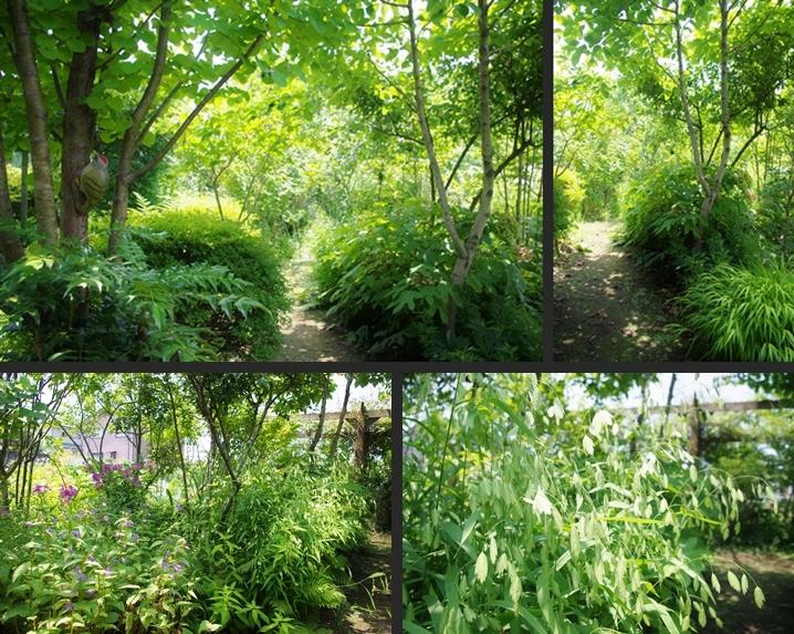 2014-07-26 2014-07-26 001 002-horz-vert