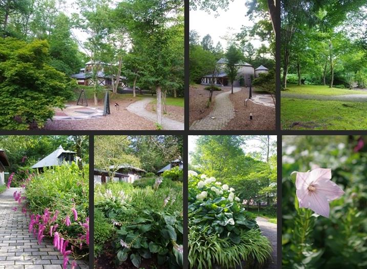 2014-07-27 2014-07-27 002 142-horz-vert