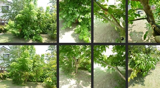 2014-07-30 2014-07-30 001 015-horz-vert