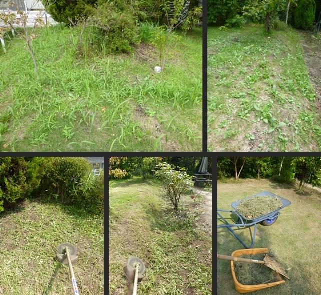 2014-07-30 2014-07-30 001 006-horz-vert