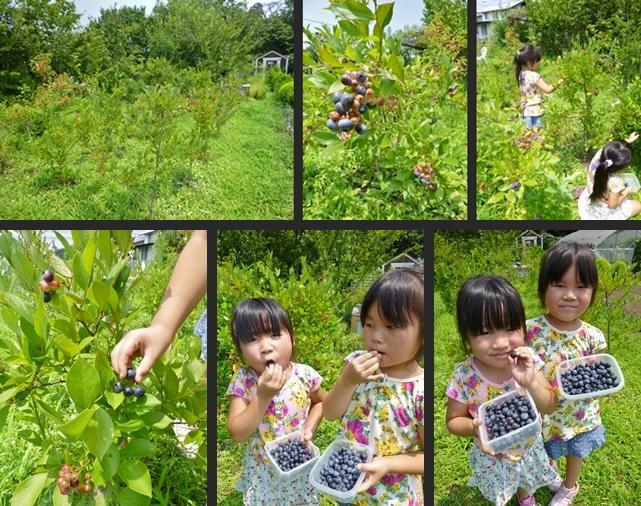 2014-07-31 2014-07-31 001 061-horz-vert