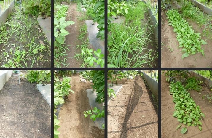 2014-07-31 2014-07-31 001 003-horz-vert