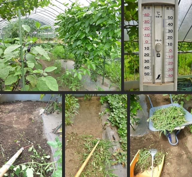 2014-07-31 2014-07-31 001 002-horz-vert