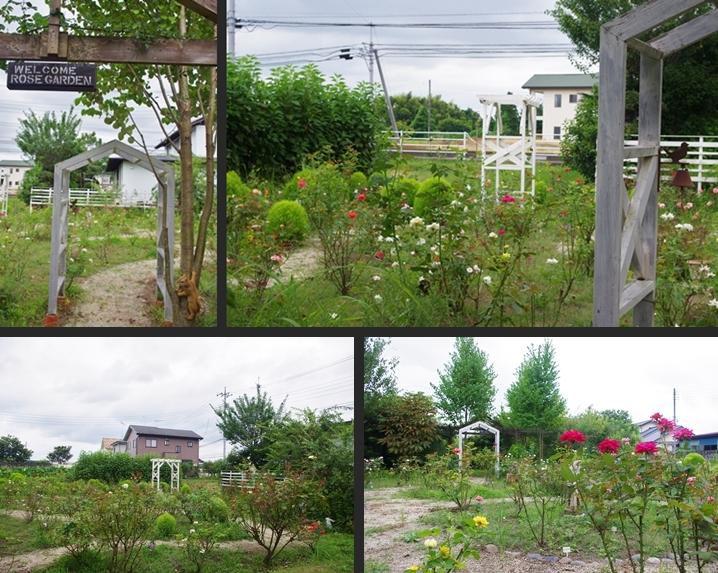 2014-08-08 2014-08-08 002 086-horz-vert