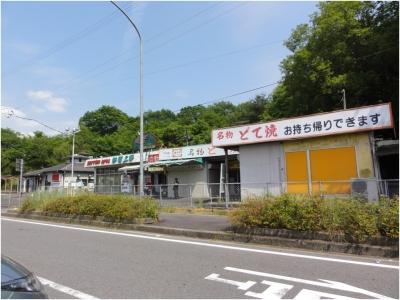 上野SA250528_06