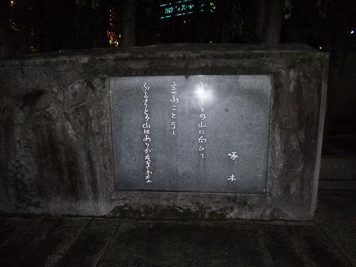 P1040280.jpg