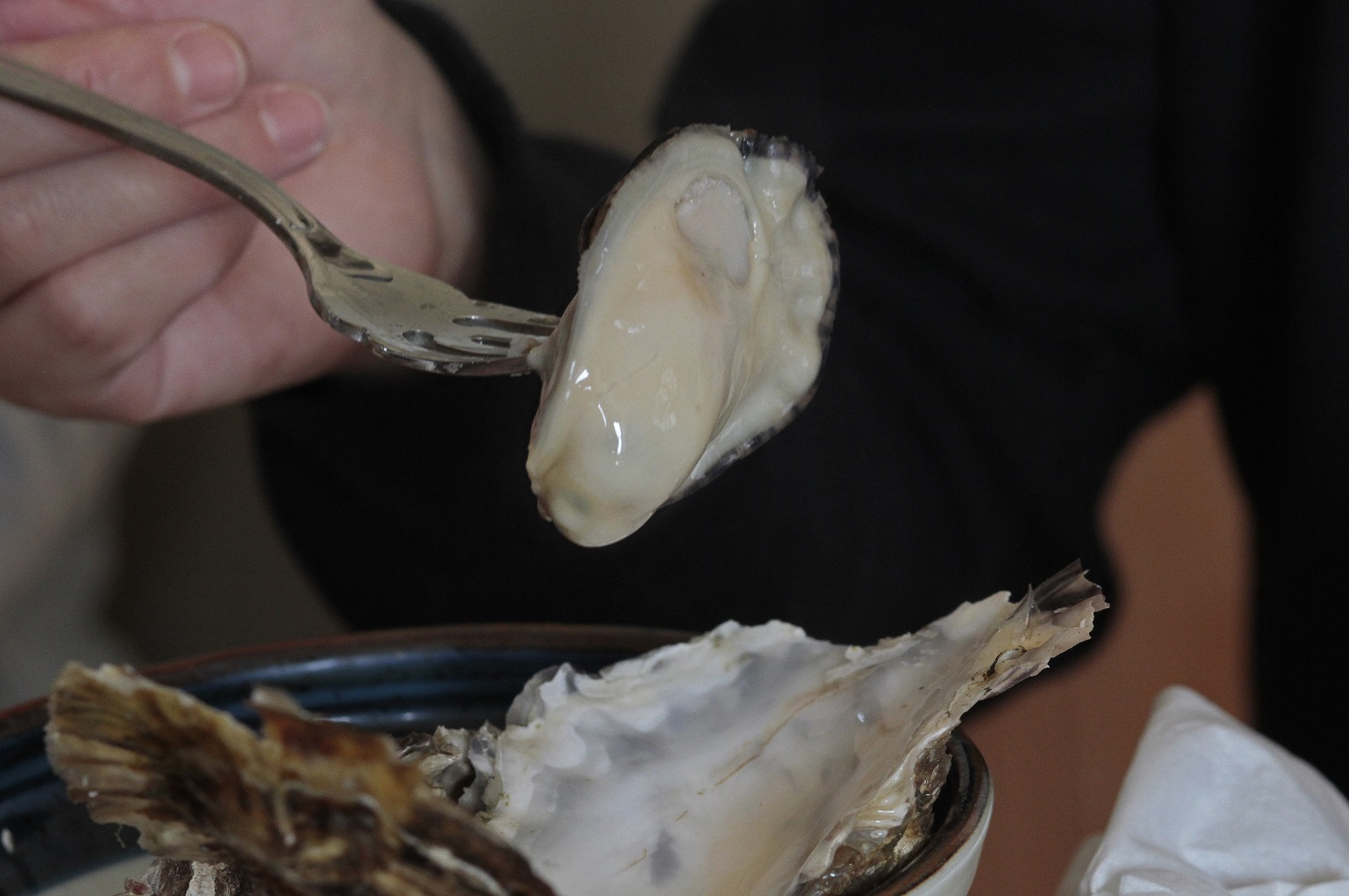 ブログセル牡蠣2