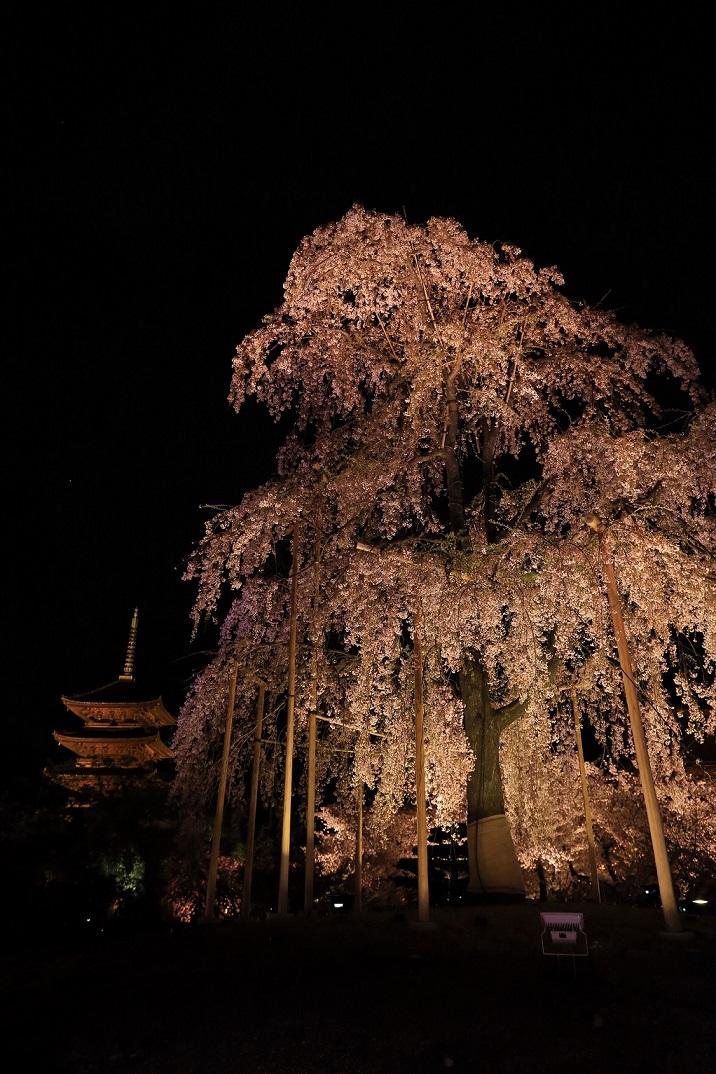 ブログ東寺ライトアップ2