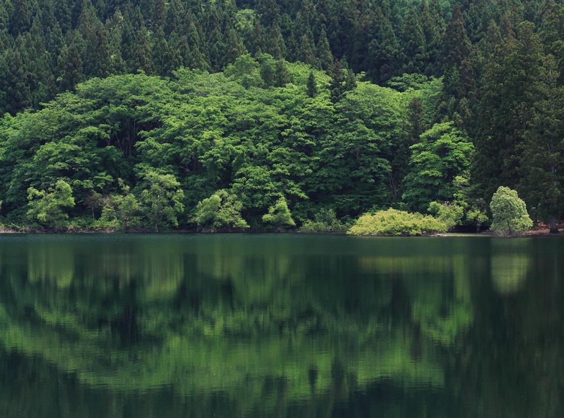 ブログ北竜湖4