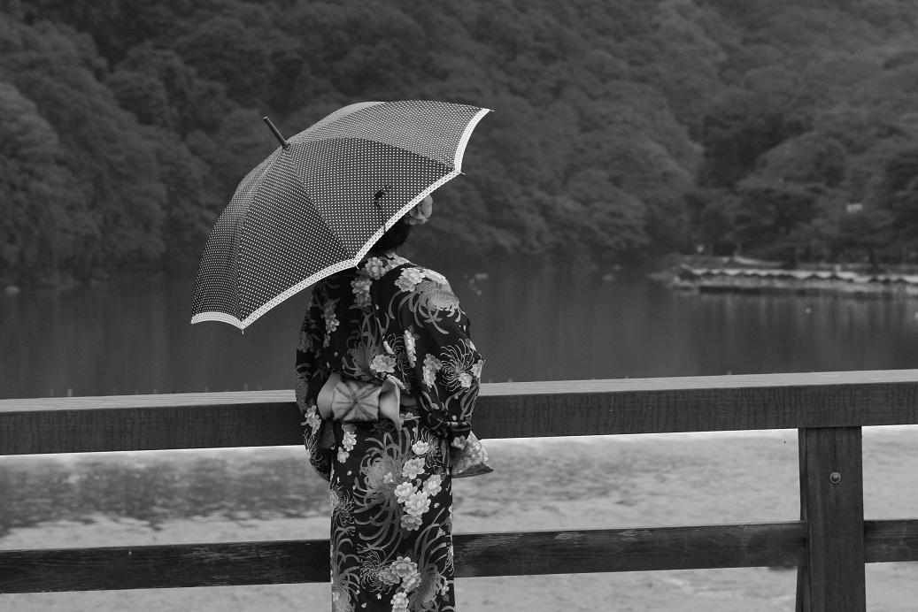 ブログ白黒渡月橋雨4 のコピー
