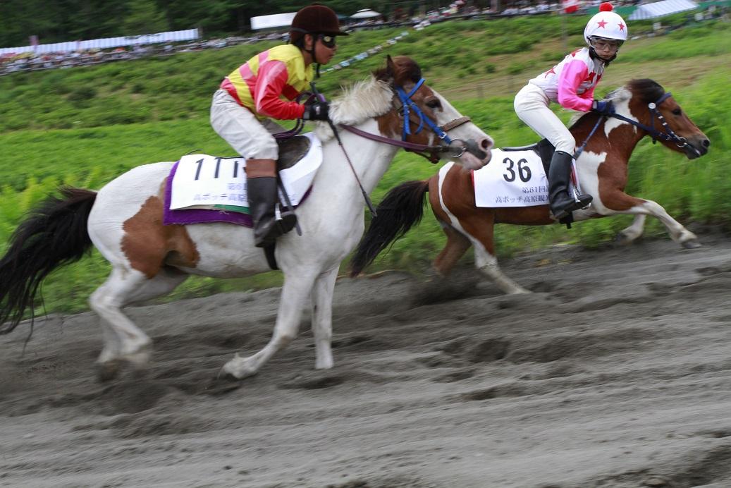 ブログ草競馬10