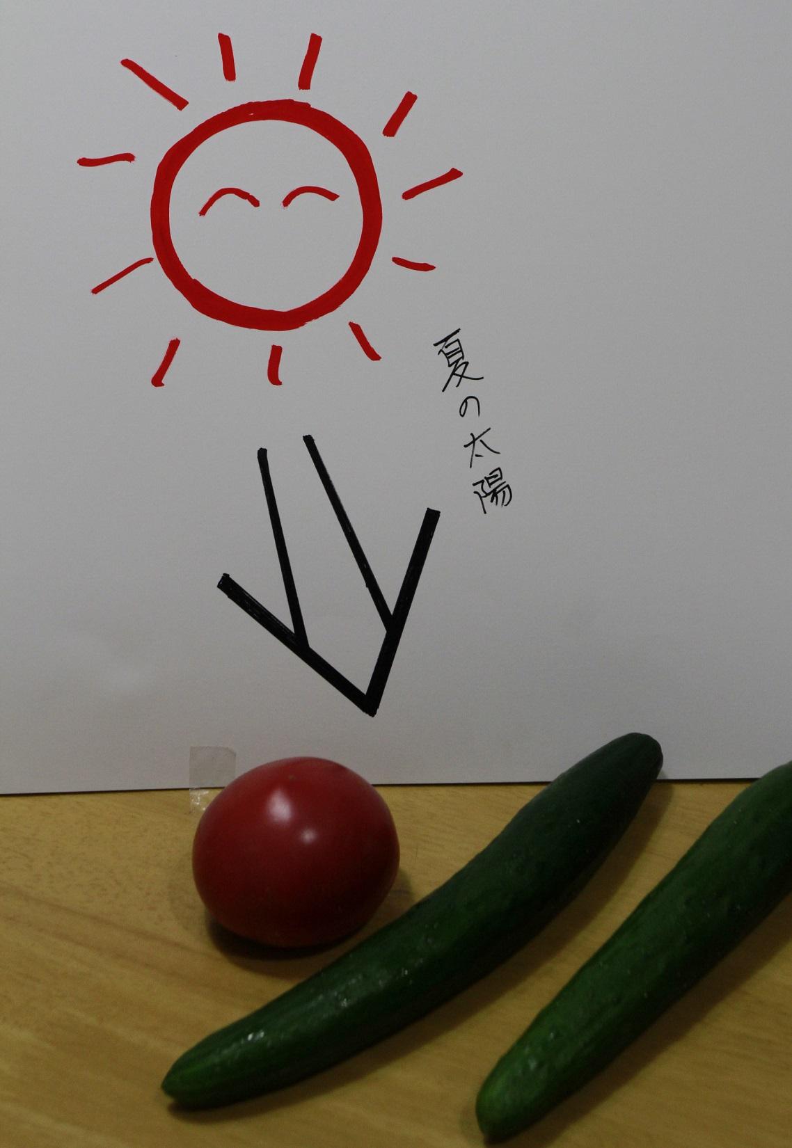 ブログ太陽1