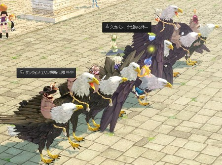 ダンバで鳥の集い