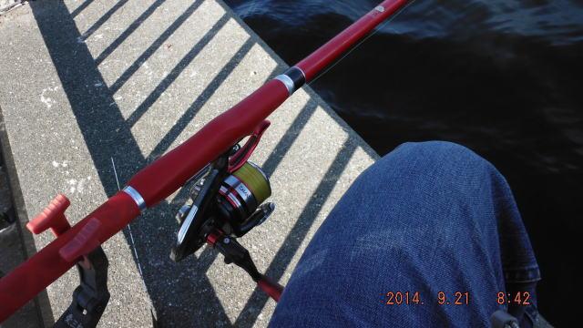 8:42 釣り開始 ♪