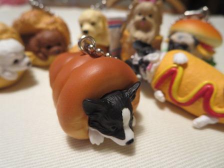 0319犬パン2
