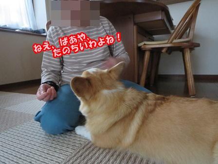 0510甘ったれ6