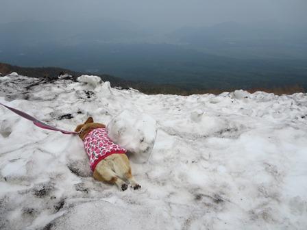 0604残雪2