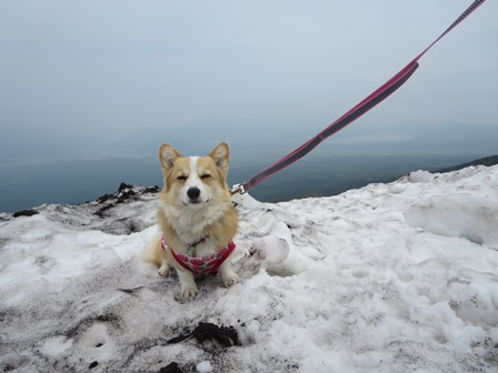 0604残雪3