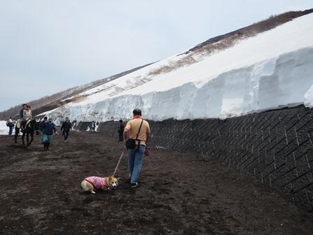 0604富士山6