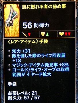 DSC09434.jpg