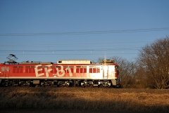 EF81_475