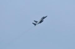Hyakuri AB_F-15DJ_44