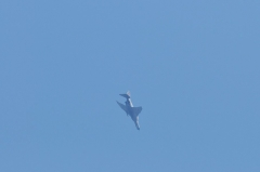 Hyakuri AB_F-4EJ_335