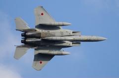 Hyakuri AB_F-15J_244