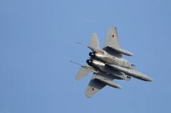 Hyakuri AB_F-15J_245
