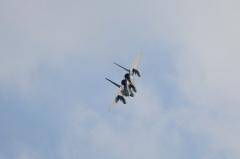 Hyakuri AB_F-15J_246