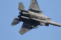 Hyakuri AB_F-15J_248