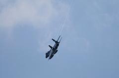 Hyakuri AB_F-15J_252