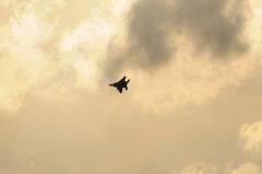 Hyakuri AB_F-15J_259