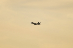 Hyakuri AB_F-15J_264