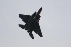 Hyakuri AB_F-15J_267
