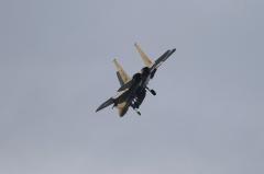 Hyakuri AB_F-15J_268