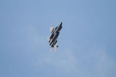 Hyakuri AB_F-15J_287