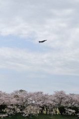 Hyakuri AB_F-4EJ_276
