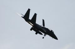 Hyakuri AB_F-15J_310