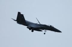 Hyakuri AB_F-15J_314