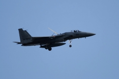 Hyakuri AB_F-15J_316