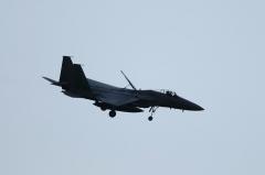 Hyakuri AB_F-15J_317