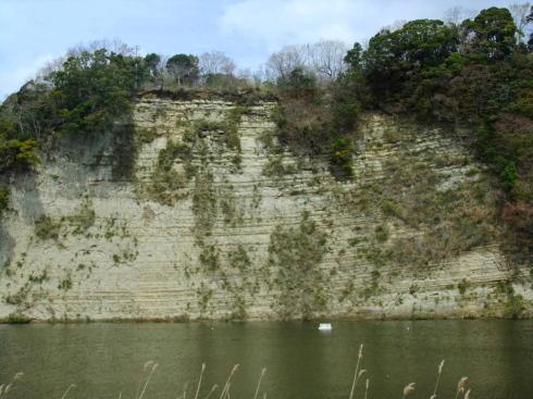H26.亀山湖花見-24
